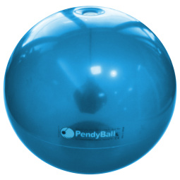 XLG004 - PENDYBALL 4 KG 70 CM